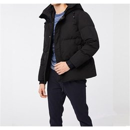 Wholesale canadian coats resale online - Downs Style Joker Coat Canadian Casual Handsome Business Goose Down Warm Winter Jacket for Man psc