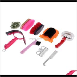 Care Equipment Camping Hiking Sports & Outdoors Drop Delivery 2021 9Pcs Grooming Kit Equestrian Supplies Sweat Scraper Horse Horeshoe Hook Br on Sale