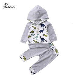 Wholesale 2Pcs Baby Clothing Newborn Infant Baby Boy Girl Dinosaur Long sleeve Hooded Sweatshirt Tops Pants Outfits Set Clothes 0-2T