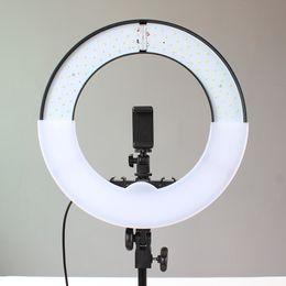 Wholesale Live light