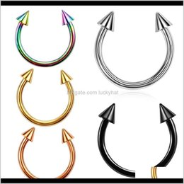 Wholesale Eyebrow Body Drop Delivery 2021 2Pcs Colorful Spike Circular Barbell Horseshoe Ring Ear Cartilage Tragus Piercing Labret Nose Hoop Rings Fash