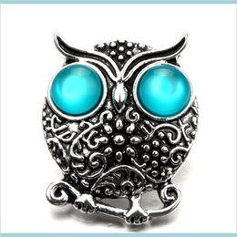 noosa owl UK - Fashion 18Mm Snap Buttons 6 Color Owl Charms Metal Diy Noosa Interchangeable Jewelry Accessories 9Vjti Hooks Mbgoq