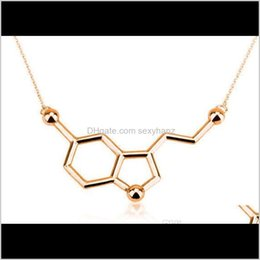 Wholesale chemical formulas for sale - Group buy Pendant Necklaces Pendants Drop Delivery Simple Molecule Chemical Formula Ht Hormone Molecular Structure Dna Necklace Nurse Je
