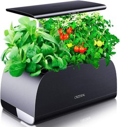 Опт Гидропоническая система растущей в помещении с регулируемой (5,9-12 дюйма) светодиодный светлый столб, автоматический таймер Hydoogarden для домашней кухни