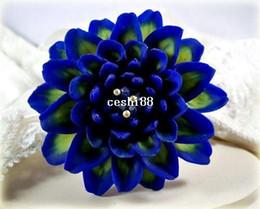 $enCountryForm.capitalKeyWord Canada - Heirloom 300 Seeds Dahlia Dinnerplate Dinner Plate Lilac Time Flower Garden Seeds B2051