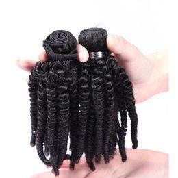 Aunty funmi virgin humAn hAir online shopping - Brazilian Human Hair Weaves Aunty Funmi Tight Kinky Curly Unprocessed Virgin Human Hair Extensions Funmi Hair Natural Black Color