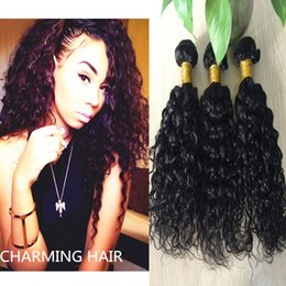 Ocean Wave Virgin Human Hair Weaves Canada - Brazilian Water Wave Brazilian Virgin Hair Ocean Wave 3pcs Lot Hair Brazillian Curly Wet and Wavy Human Hair Bundles 2016 8A
