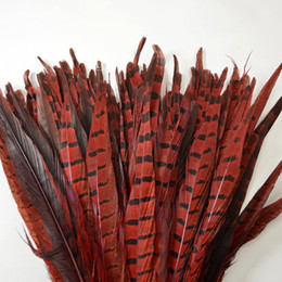 China Free shipping 100pcs lot 12-14inch(30-35cm) Red Ringneck Pheasant Tail Feathers A quality pheasant feathers Costume Feather for decor suppliers