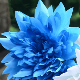 Perennials blue flowers canada best selling perennials blue a package 100 pieces blue dahlia seeds beautiful gardens dahlia pinnata bonsai plant seeds flower seeds perennial mightylinksfo