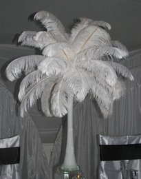 $enCountryForm.capitalKeyWord NZ - Natural White Ostrich Feathers Plume Centerpiece for Wedding Party Table Decoration Free Shipping (Many Sizes for You To Choose)