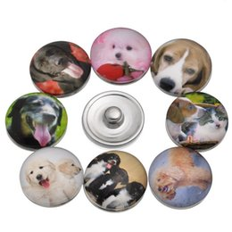 snap animals NZ - JACK88 New Arrival Mix Styles 36pcs lot High Quality 18mm Snaps Pet Dog Glass Ginger Snap Button Charm Bracelet Jewelry M732