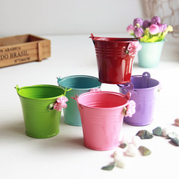 Wholesale 6pcs modern pastoral mini metal bucket mix color flower pot windowsill desktop usage garden flowerpot plant pots vaso jardim
