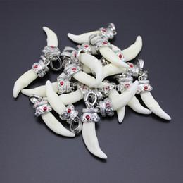 Много 10 шт. Тибет стиль белый реальный натуральный зуб прелести прохладный клыки Волк зуб подвески разъемы Амулет подарок MN256