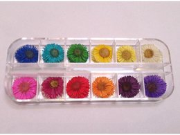 dried flowers for nails UK - Wholesale-Free Shipping Latest Popular 100% Nature Pressed Flowers A-Grade Dried Flowers For Nail Art And DIY Decoration 1.5cm 60pcs box