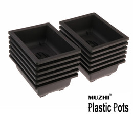 Large Bonsai Pots Nz Buy New Large Bonsai Pots Online From Best