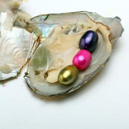 Trillizos 6-8mm 3 Perla Oval de Arroz en Shell de Ostra de Agua Dulce Materiales Para Teñir Joyas Regalo Sorpresa Con Paquete de Vacío Envío Gratis