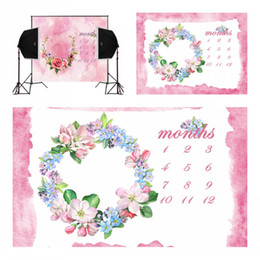 Wholesale pink paint wall rose blossoms calendar for newborn photography backdrops camera fotografica baby photo background digital studio vinyl props
