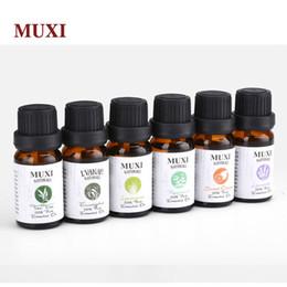 Ароматерапия Топ-6 основных природных ароматических масел Лаванда Монетный двор чайного дерева Лимонная трава Сладкий апельсин Эвкалипт Эфирное масло