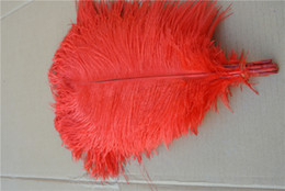 ostrich feathers centerpiece red NZ - Wholesale-FREE SHIPPING 50pcs lot 16-18inch(40-45cm) RED Ostrich Feathers for wedding table Centerpiece wedding decor party supply