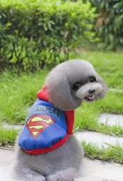 fall clothes 2019 - A27 pet Dog 100% cotton Sweatshirts Clothes- batman,superman design spring autumn Clothing for Dogs Pets Clothes cheap f