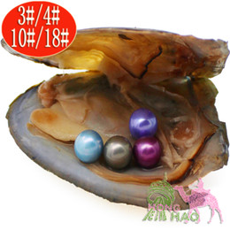 pearl oyster shell wholesale Australia - Round cultivated freshwater oyster wish pearl pearl mussel shell oyster vacuum wrapped in four pieces of pearl mystery surprise gift