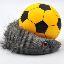 Ingrosso Pallone da calcio palla rotella subacquea del dj del giocattolo del giocattolo del calcio della novità del giocattolo di DHL, acqua e acqua anfibio elettrica nel castoro
