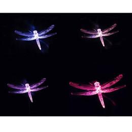 $enCountryForm.capitalKeyWord NZ - New solar lights, birds, dragonflies, butterflies, solar garden decorative lights, light control, solar street lights