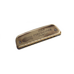 China Vintage Style Blues Harmonica Golden 10 Holes C Key Mouth Organ Wind Musical Instrument Kids Beginners Adults Gifts suppliers