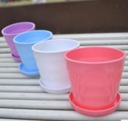 $enCountryForm.capitalKeyWord Canada - Bonsai Planters Latest Breathable Plastic Table Mini Succulents Plant Pots with Plate Gardening Vase Round Flower Pot Colorful