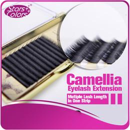 $enCountryForm.capitalKeyWord Canada - High Quality Super Thin 0.07mm Volume Eyelash Extension New Products Hot Selling Natural Swan Fur Eyelash