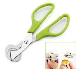 Egg crackEr online shopping - New Arrive Pigeon Quail Egg scissor Bird Cutter Opener Kitchen Tool Clipper Cigar Cracker Blade