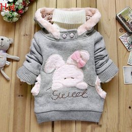 Cartoon Rabbit Hoodies Canada - New 2016 Children Clothing Cartoon Rabbit Sweatshirt Fleece Outerwear Girl Hoodies Fashion Hooded Jacket Winter Coat Pink Grey Hot SV010706