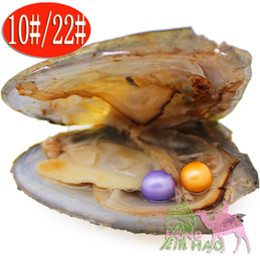 pearl oyster shell wholesale Australia - Jewelry gifts surprise jewelry 6-7mm round natural freshwater aquaculture love pearl oyster 2pc vacuum bag mussel shell oyster