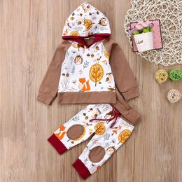 Wholesale Baby Animals Hoodie Toddler Outfits Tops T shirt Pants Set Newborn Baby Clothing Fox Owl Long Sleeve Girls Clothing Boy Clothes M