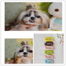 $enCountryForm.capitalKeyWord Australia - Pet Hair Accessories Dogs grooming Pet Yorkshire sparkling Tiara New Dog 3.2 Hair Clips Dog Cat Hairpin Grooming Jewel