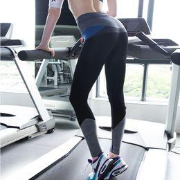 $enCountryForm.capitalKeyWord Canada - Wholesale-rodex Hot Sale Women Patch Color Sports Yoga Pants Compression Elastic Ninth Pant Ladies Fashion Fitness Quick Dry Pants