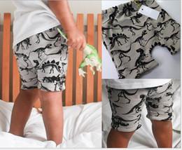 Harem Pants Cotton Blended For Boys Canada - Boys Girls PP Pants Cotton Dinosaur For Children Harem Pants Clothes 2016 New Fashion Clothing size choose free K7719