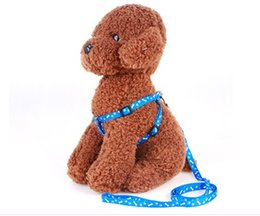 $enCountryForm.capitalKeyWord Canada - Dogs Real Limited Anytime Small Leashes Colorful Nylon Fda Solid Perro 2016 Newest Best Selling Dog Lead Harness Leash Collar Set Adjustable