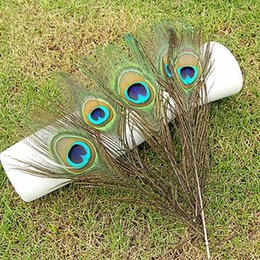 Wholesale accessories for clothes decoration for sale - Group buy 25 CM Natural Peacock Feathers Elegant Decorative Accessories Genuine Natural Peacock Feathers for Party Clothing Bag Decoration