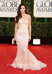 Champagne Golden Globe Dresses NZ - Glamour Megan Fox Celebrity Red Carpet Golden Globes Evening Dress Mermaid Lace Long Formal Party Gown