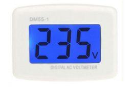 Ac Voltmeter Tester Canada - DM55-1 AC 80-300V Voltage Meter Plug Volt Meter Electrical Instruments LCD Digital Voltmeter Pen Testers