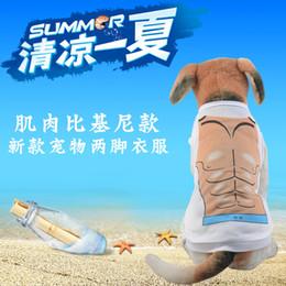 $enCountryForm.capitalKeyWord Australia - Pet sexy dog vest pet clothing foreign trade Cool summer polyester vest Cool vest