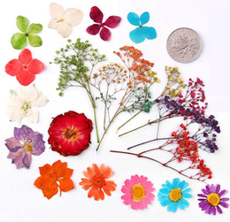 Filler Flowers NZ - 100pcs Mixed Pressed Press Dried Flower Filler For Epoxy Resin Pendant Necklace Jewelry Making Craft DIY Accessories
