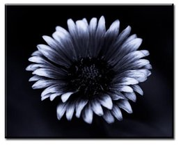 Dp Artisan Gaillardia Flower Art Wall Painting Print On Canvas For Home Decor Paints Wall Pictures No Framed Picture