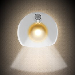 $enCountryForm.capitalKeyWord NZ - motion sensor wall light,motion activated night light for Bedroom,Bathroom,Kitchen, Toilet, Hallway,Stair and Home Flashlights(White)