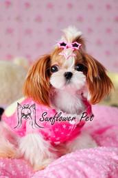 $enCountryForm.capitalKeyWord Canada - Pet Dog pentagram Sunglass Hairpin hair clip Pet Dog grooming accessory Teddy Yorkshire Head flower hair clip