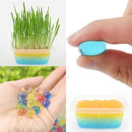Water crystals for plants online shopping - Soilless Gardening Crystal Mud Crystal Soil Big Water Beads Ball for Flowers Plants Home Decoration IB367