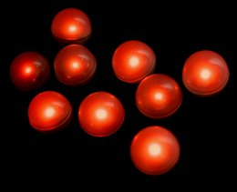 $enCountryForm.capitalKeyWord Canada - Fairy LED Pearls 3 4inch Diameter Clear Round Ball Waterproof LED Fading Berries Light For Wedding Centerpiece Flower Balloons Decoration