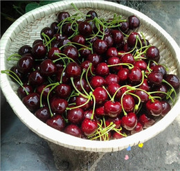 $enCountryForm.capitalKeyWord NZ - New Arrival Artificial Fruits Simulation Cherry Cherries Fake Fruit and Vegetables Home Decoration Shoot Props 4138