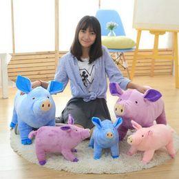 $enCountryForm.capitalKeyWord Canada - 38 65cm Cute Pig Plush Toys Mother Son Pig cloth Doll pillow Cushion animals stuffed plush Doll kids birthday Christmas present